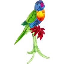 Swarovski Rainbow Lorikeet