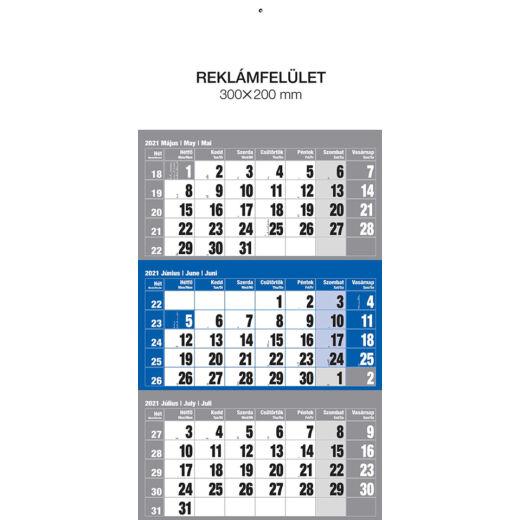 Realsystem Speditőr naptár fejlappal, 12 lapos, 2021 - Kék
