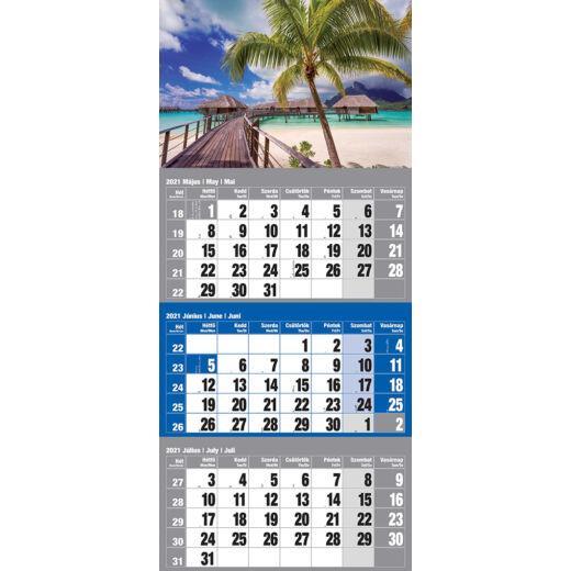 Realsystem Speditőr naptár, 2021 - Sziget